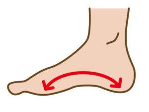 足裏のアーチが、足の健康バロメーター。足裏アーチが体を支えてくれる土台です