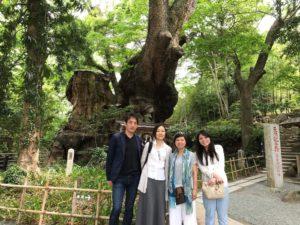 パワースポット,来宮神社,熱海,みのわあい,TABICA,街歩きツアー