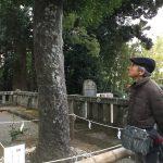 伊豆山神社,パワースポット,街歩き,熱海観光,みのわあい,TABICA